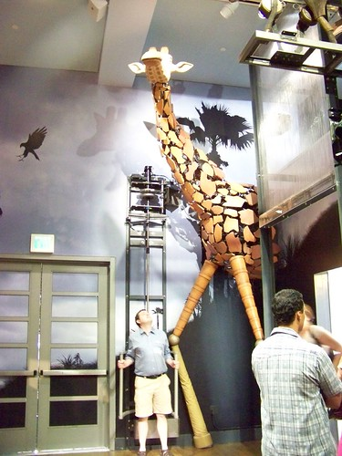 Brian, controlling the giraffe