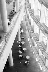 The National Art Center, Tokyo 1 (Mariosdog) Tags: japan tokyo nikon roppongi d80 nationalartcenter