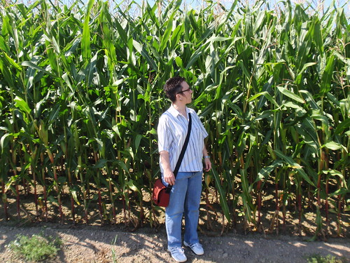 Kleine Frau vor hohem Mais
