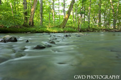 The Rapids (GWD Photography) Tags: camp tree water rock creek forest canon river photography rebel xt woods stream long exposure angle wide gordon rapid roxbury gwd sigma1020