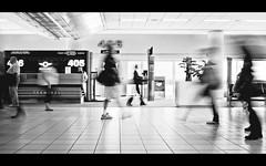 Terminal (isayx3) Tags: light people bw white motion black blur blackwhite airport nikon gate long exposure conversion terminal 24mm nikkor f28 d3 isayx3plainjoe