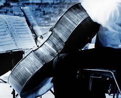 Rhapsodie en bleu (Paolo Pizzimenti) Tags: concert paolo olympus bleu musique surréel rhapsodie micromosso