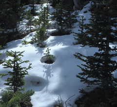 September Snow (Colorado Sands) Tags: schnee usa snow mountains nature america us colorado unitedstates snowy nieve sneeuw september neve rockymountains neige sn montanhas sn montagnes salju sno montanhasrochosas sandraleidholdt leidholdt saljunya