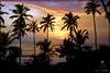 Sunset   Kovalam  Kerala