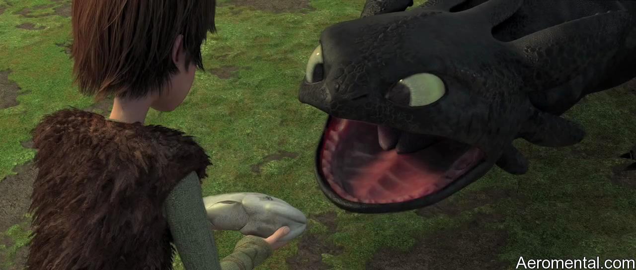 Cómo entrenar a tu Dragón 17