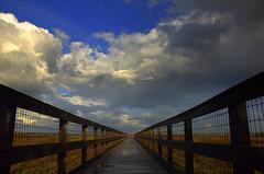 Slight (gatorgalpics) Tags: sundown prairie sundog paynesprairie paynes us441 paynesprairielookout