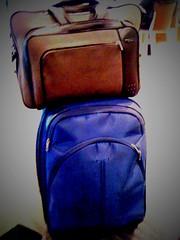 Traveling Companions