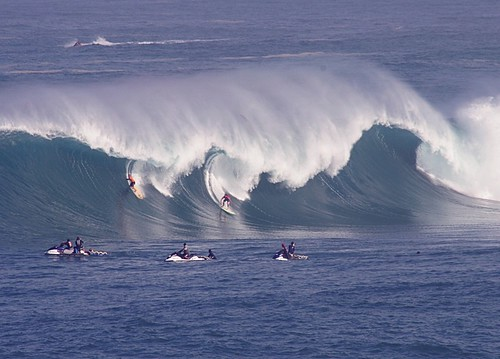 Surfers at Eddie Aikau
