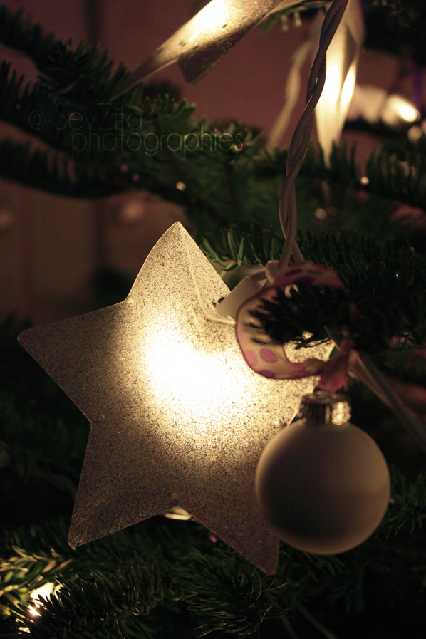 Noël 2009 #4
