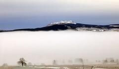 Le Mézenc flotte sur un nuage (sabine-43) Tags: hauteloire mézenc
