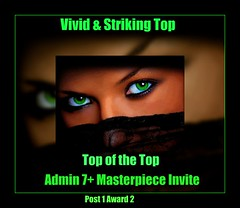 Vivid & Striking Top of the Top Admin Invite