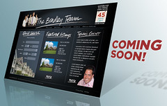 Bradley Team web design