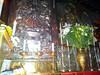 20120523_102201 (missionari.verbiti) Tags: verbiti amiciverbiti terrasanta turismo israele neghev marmorto qumran gerusalemme betlemme gerico nazareth tabor cafarnao hermon cesarea