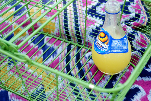 Orangina in Picnic Basket on Blanket