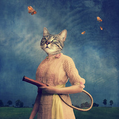 The woman in love - l'amoureuse (Martine Roch) Tags: animal cat butterfly square evening play tabby dream butterflies surreal tennis photomontage imagination distracted manray petitechose martineroch taleofthecat flypapertextures