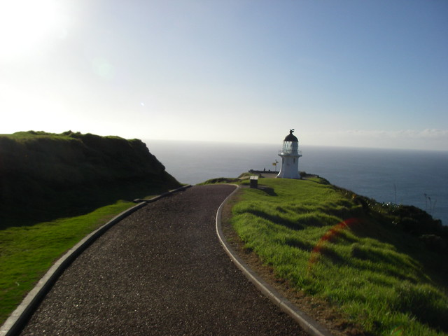 Cape Reinga path