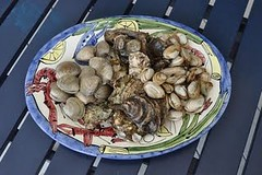 Clams Oysters and Steamers