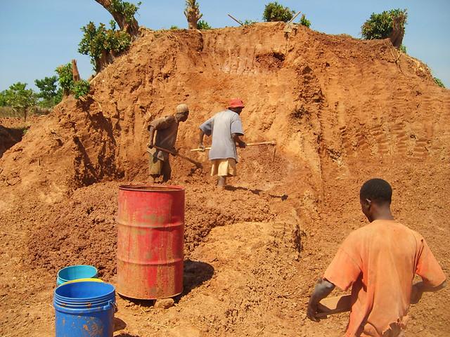 clay termite mound