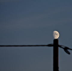 RESTING MOON (justfordream) Tags: moon mond pole resting mast ausruhen