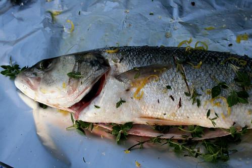 Sea bass herbs