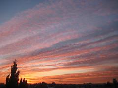 desde mi habitacin... (lucia_fidalgom) Tags: madrid sunset sky espaa sun atardecer spain colours puestadesol habitacin