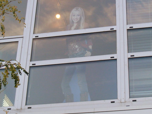 Miley, Somebody's Veridian Apartment Window