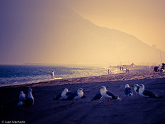 Mediterrneo todava (Juan Machado [McKeyn]) Tags: sunset espaa atardecer mar andaluca spain playa cdiz mediterrneo campodegibraltar lalneadelaconcepcin playadelaalcaidesa