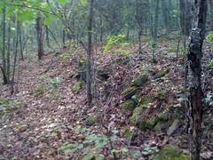 Oconee Heritage Homestead Ruins 3