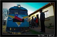 Viva Chile (cespedesenelmaule) Tags: chile tren trenes reflex nikon d fiestas septiembre campo 18 patrias 60 constitución talca maule ramal dieciocho fiestaspatrias buscarril toconey