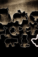 cookie farm (ion-bogdan dumitrescu) Tags: bear pink man black bird animal metal cat butterfly dark duck cookie sheep heart background shapes moose deer plastic biscuit human owl shape cutter cutters bitzi ibdp mg0202xedit findgetty ibdpro wwwibdpro ionbogdandumitrescuphotography