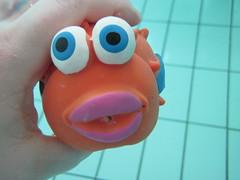 Little Fish #1 (Alison et Cedric) Tags: underwater powershot bubble bulle d10 waterquot quotunder
