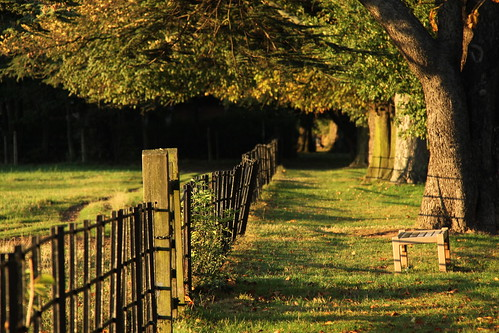 Autumn in Osterley Park by bortescristian, on Flickr