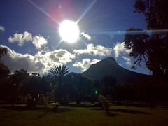Late afternoon walk in DeWaal park