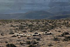 baudchon-baluchon-descente-patagonie-28