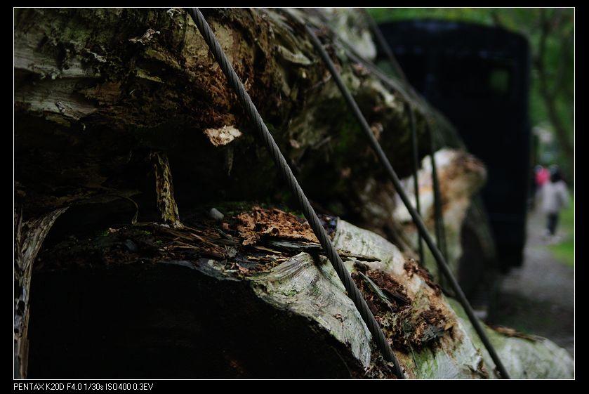 2009/12/20 Pentax--FA 28-70mm f4 AL