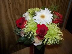 Christmass flowers