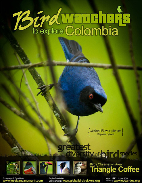 Bird Watchers to Explore Colombia Vol.1