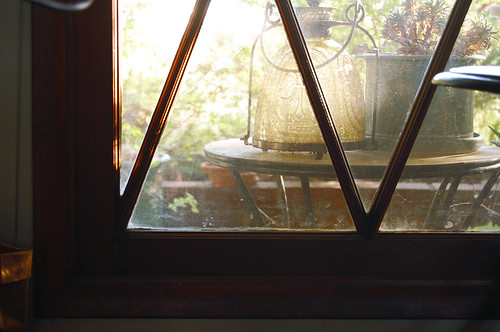afternoon light on the window