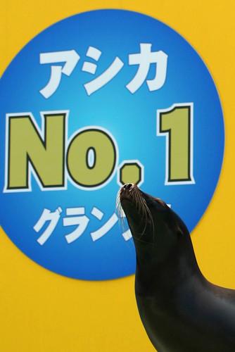 no. 1 seal