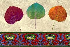 Aspen Adagio (Maureclaire) Tags: collage leaf digitalart aspen alteredimages adrinnesmagicalmoments