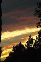 July Sky 3
