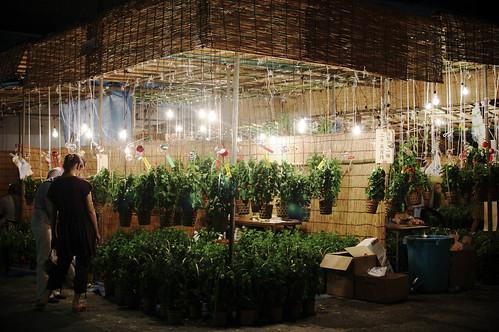 Asakuse houzuki market