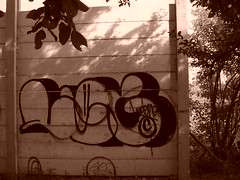 leguan 89 (bubblestyler) Tags: leg 89 throwup leguan