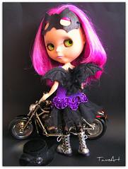 Indigo claims the new Harley V-Rod