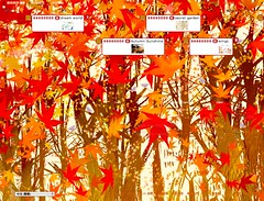 Maple red (11111111vvvvv) Tags: css plurk plurktheme  plurkcss