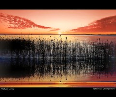 tramonto al Lago di Garda 2009 (FIORASO GIAMPIETRO ITALY....) Tags: travel italy lago garda europe italia tramonto natura verona excellent viaggio vacanza visualart vacanze lagodigarda emozioni veneto bardolino greatphoto panorami ladscapes supershot flickrsbest fioraso giampietro canoneos50d platinumphoto anawesomeshot colorphotoaward goldcollection holidaysvacanzeurlaub flickraward overtheexcellence platinumheartaward sunsetmania goldstaraward thesuperbmasterpiece natureselegantshots spiritofphotography multimegashot photoshopcreativo vosplusbellesphotos alwaysexcellent artofimages saariysqualitypictures absolutegoldenmasterpiece savebeautifulearth scattifotografici fiorasogiampietro updatecollection platinumbestshot platinumpeaceaward absolutelyperrrfect magicunicornverybest obramaestra