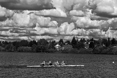 Row Fast (Seattleborn - I'mmmm Back) Tags: seattle bw lake water clouds lakes greenlake rowing yourbestoftoday