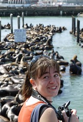 Molly and the Sea Lions (J.P. EVERETT) Tags: ocean california ca camera city sea nature water animal animals boats outside outdoors photography coast boat marine san francisco photographer pacific outdoor lion molly coastal seal wharf lions mammals attraction wharfs californianus simonson zalophus