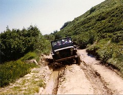 In the muddy ruts (stefho74) Tags: jeep mb willys jeepwillys willysmb jeepmb willysmbjeep jeepwillysmb