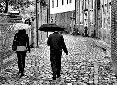 Rain in Leuven beguinage, thank you, Jerry. In B/W.